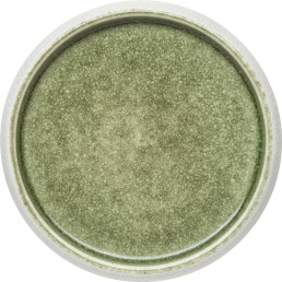 "Porzellan Serie ""Samoa"" grün Teller flach Ø19cm"
