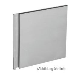 Tür für Schrank 600 m, 295 x 415 x 30 mm