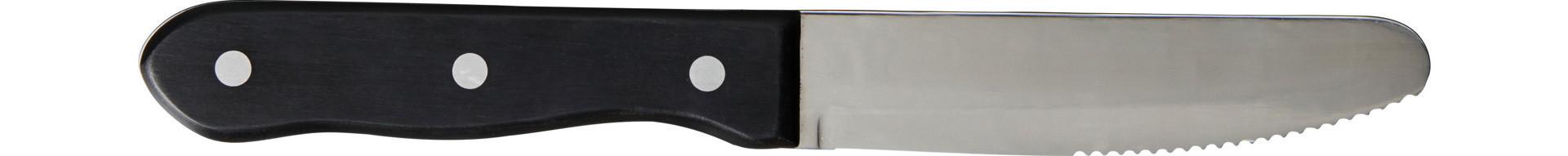 Varick Steak Knives, Steakmesser 250 mm Kunststoffgriff